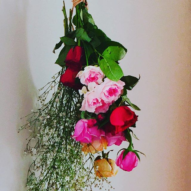 お祝いで頂いたお花を記念に置いておきたくて、ドライフラワーに..#ドライフラワー#薔薇#かすみ草#祝電#お祝いのお花#お祝いのお花ありがとうございます