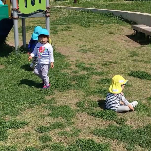 風をあつめて。風と、ともだち🤝#舞多聞もりの保育園#もりの保育園#公園#こっそりママも見にくる#風とともだち
