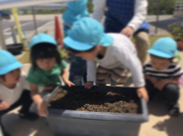 ハイチーズ♡︎('ω'︎ )#お花の種植えたよ#2歳児#舞多聞もりの保育園#もりの保育園#ピンクのハートプロジェクト#0歳からのyoga#まんまるねんね