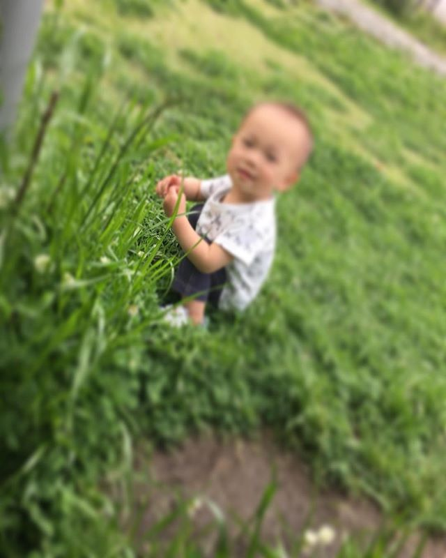 ハイチーズ♡︎('ω'︎ )#シロツメグサ見つけたよ#1歳児#舞多聞もりの保育園#もりの保育園#ピンクのハートプロジェクト#0歳からのyoga#まんまるねんね