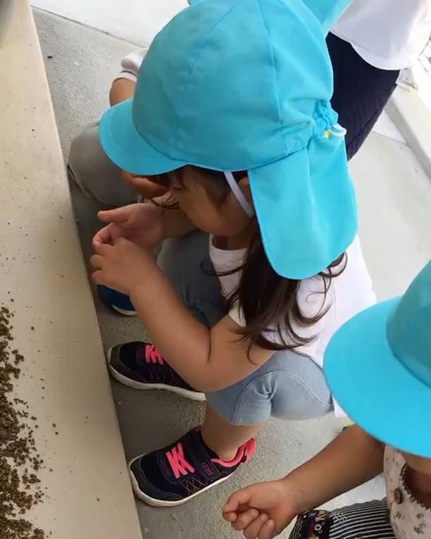 ハイチーズ♡︎('ω'︎ )##2歳児#舞多聞もりの保育園#もりの保育園#ピンクのハートプロジェクト#0歳からのyoga#まんまるねんね
