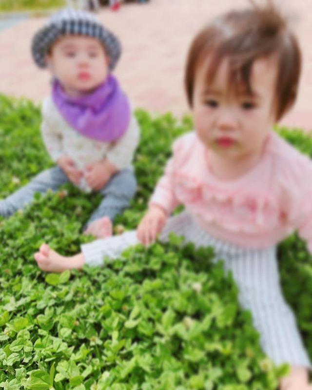 ハイチーズ♡︎('ω'︎ )#クローバーの中で #0歳児#1歳児#舞多聞もりの保育園#もりの保育園#ピンクのハートプロジェクト#0歳からのyoga#まんまるねんね